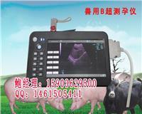 郑州豪润奇兽用B超价格