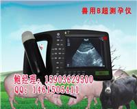 母猪A超测孕仪和母猪B超测孕仪的区别 兽用A超测孕仪