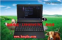 便携式彩色B超笔记本型牛用B超|猪用B超|多少钱一台 HRQ-6000AV