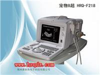 台式兽用b超/高级宠物B超机/高清电子凸阵B超 HRQ-F218