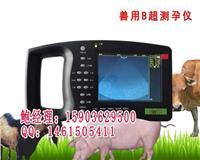 牛用B超哪家好 牛用B超使用方法 HRQ-5000AV