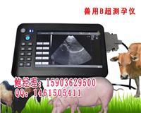 养殖场生猪和繁殖专用动物B超机便携式母猪测孕仪价格 HRQ-5100AV