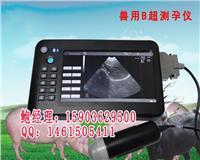母猪妊娠诊断仪多少钱兽用B超机厂家直销 HRQ-5100AV