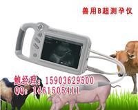 手持式动物B超机最便宜的多少钱牛用B超机 HRQ-P09