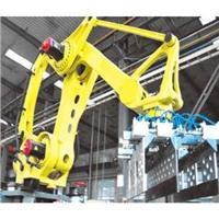 六自由度机械手,六自由度机器人,六自由度机械臂,多自由度机器人