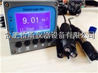 DO-500经济型工业在线溶解氧仪