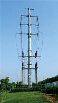 电力杆生产厂家 001