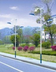 貴州風光互補路燈 LD