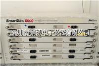 Spirent LAN-6201B 模块 Spirent LAN-6201B 模块