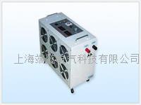 FST-FD200蓄电池组容量测试仪 FST-FD200