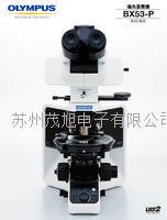OLYMPUS偏光顯微鏡