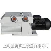 进口真空泵维修 上海真空泵维修 德国Leybold D65B 真空泵维修 莱宝真空泵维修 D65B