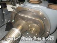 Alcatel 阿尔卡特真空泵维修 RSV301B
