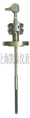 气化炉专用可调防振热电偶