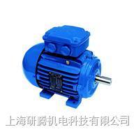 WEG高效電機 W22
