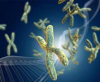 全基因组重测序