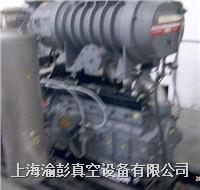 愛德華GV600 GV600真空泵