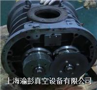 愛發科冷泵維修,愛發科羅茨泵維修,愛發科油泵維修 PMB024C