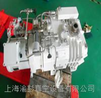 真空泵維修,來寶真空泵價格,來寶真空泵維修價格,來寶真空泵維修電話13651611958 LEYBOLD WSU1001