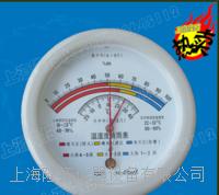 指针式温湿度表、温湿度晴雨表 HM10