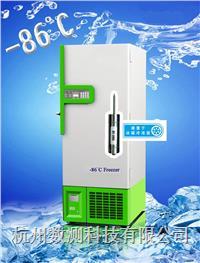 无线低温温度记录仪 DT-200L