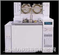 在线过程气相色谱仪天然气分析解决方案 wasson-ece
