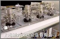 在线过程气相色谱仪特定分析解决方案 wasson-ece