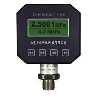HX601 精密数字壓力表 HX601