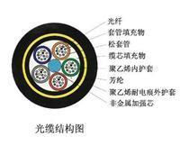 长飞GYXS/GYXTW光缆