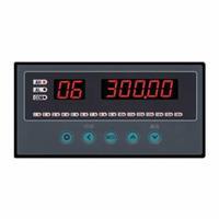 WPLE-A温度巡检仪,WPLE多路巡检显示仪,迅鹏 WPLE