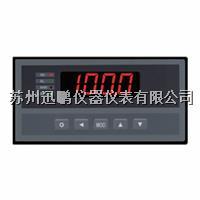 苏州迅鹏WPHC-B手动操作器 WPHC