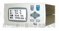 无纸记录仪,温度无纸记录仪,苏州迅鹏WPR21R WPR21R