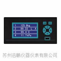苏州迅鹏WPR10压力无纸记录仪 WPR10