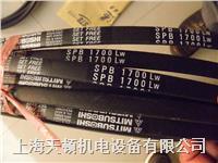 SPB2410LW/5V950耐高溫進口三角帶 SPB2410LW/5V950