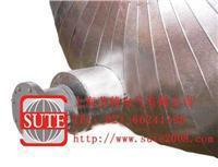 插入式防爆加热棒 ST1056