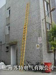 10米全绝缘二节拉升梯 ST