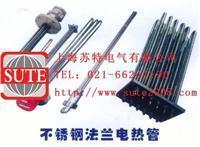 不锈钢法兰电热管  ST1050