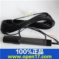 IP-600-10 ph电极