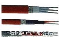 RDP2(3)-J3型单相(三相)恒功率电热带 RDP2(3)-J3型