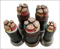 低烟无卤阻燃防鼠防白蚁电力电缆 WDZ-FSY-YJY