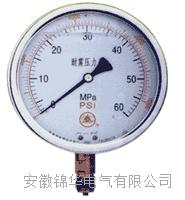 YN50 60 100 150系列耐震压力表