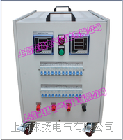 单相负载箱 LYFZX-II-10KVA/380V