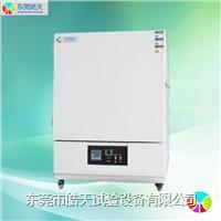 电热鼓风干燥箱批发价 ST-216