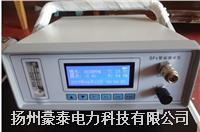 SF6智能微水仪 EHO-05