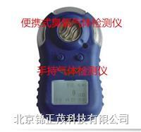 臭氧检测仪GC10  GC10