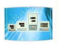 高精度智能温控仪 YLE-2000