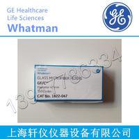 GE Whatman沃特曼Grade 4定性滤纸1004-090 1004-027/1004-090