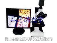 L2003金相数码检测显微镜 L2003