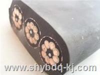 天车扁电缆批发/天车扁平电缆多少钱一米