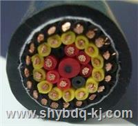 钢丝扁电缆/加强型钢丝扁平软电缆